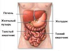 Ливодекса может помочь снизить риск развития варикозного расширения вен и заболеваний печени